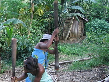 Malagasy pounding rice with a pestle in giant wooden mortar to dehull it